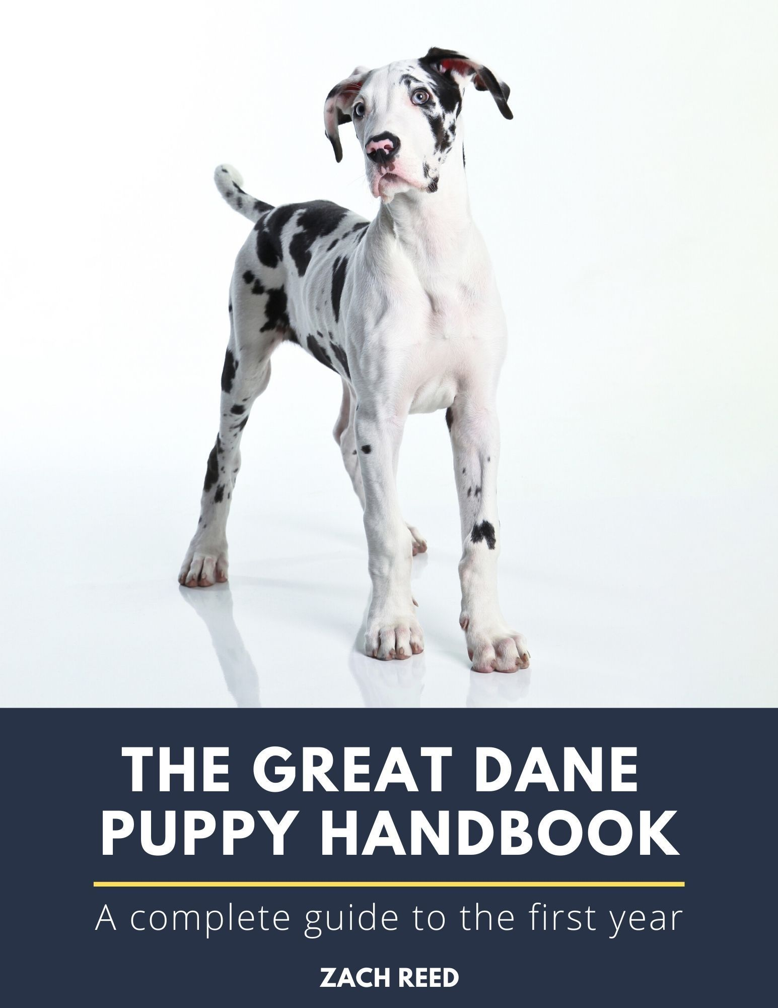 The Ultimate Guide To Great Dane Puppy Care This Book Covers