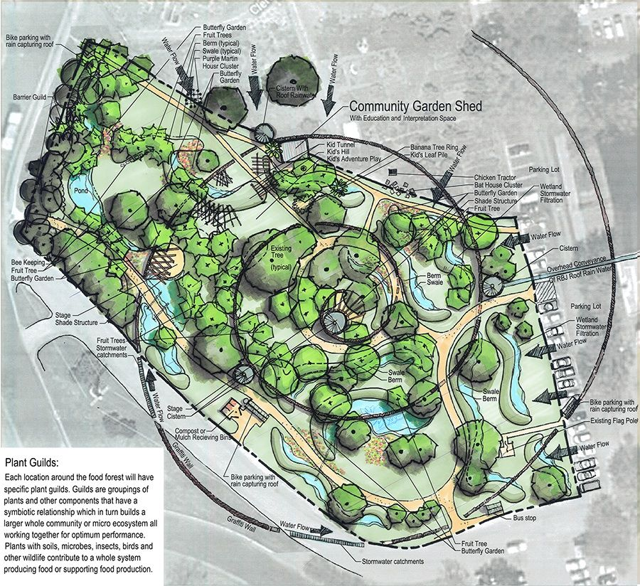 Food Forest Design Phase Of Urban Agriculture East