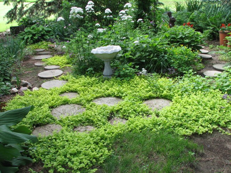 Secret Garden Stepping Stones Backyard Garden Design 400 x 300