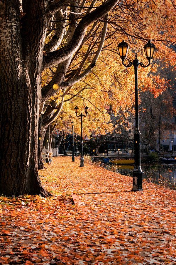 Autumn in Greece by ioannis ioannidis / 500px