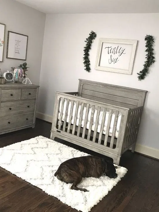 81 Cool Baby Room Decor Ideas For Boys In 2020 With Images
