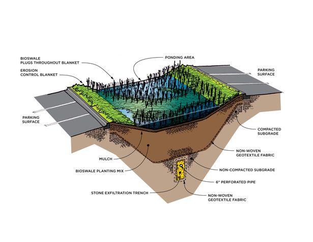 Bioswale Conrad Gartz Archinect Landscape And Urbanism Architecture Urban Landscape Design Landscape Design Drawings