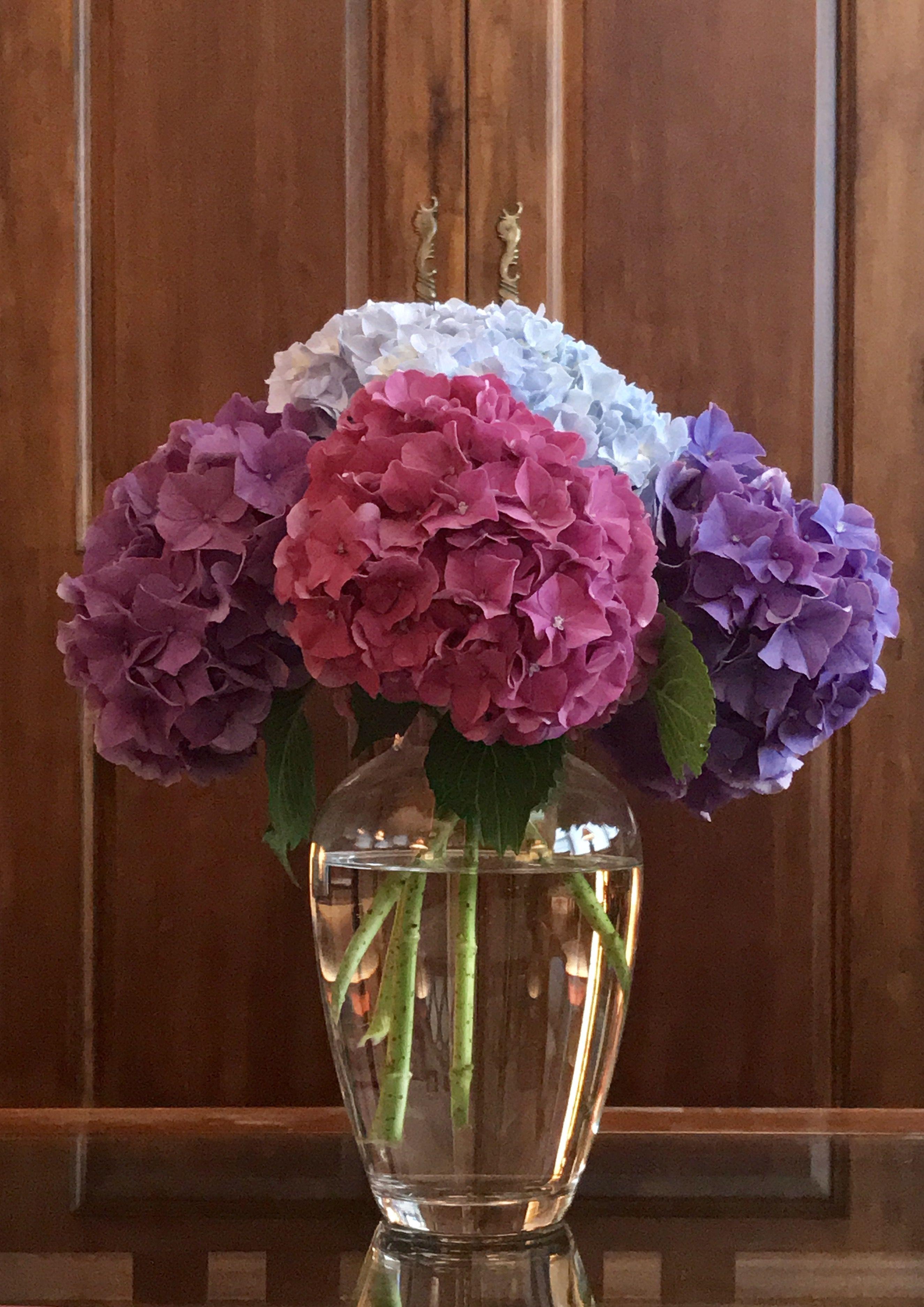 Our coffee table arrangement Purple Blue and Fuchsia hydrangeas
