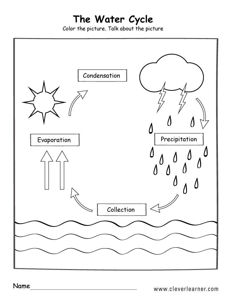 Worksheets The Water Cycle In 2020 Water Cycle Worksheet Water Cycle Water Cycle Poster The water cycle worksheet