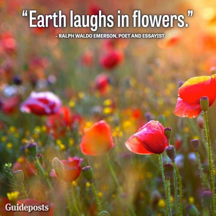 Laugh in flowers ♡