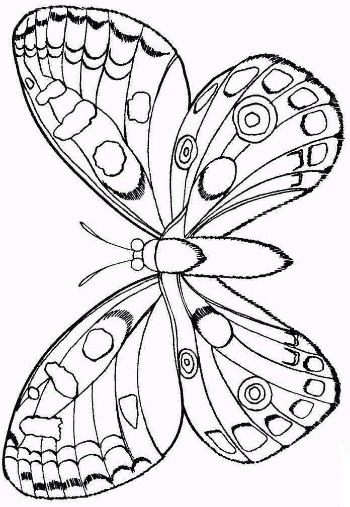 трафареты бабочек своими руками   Butterfly   Pinterest   Mariposas ...