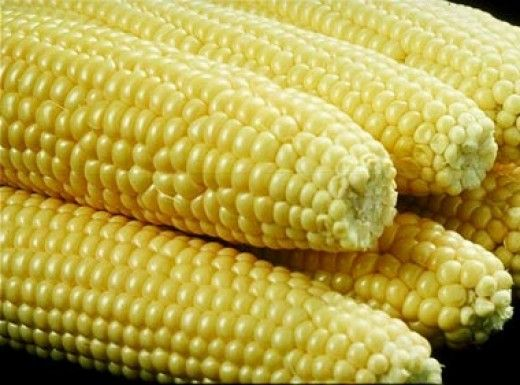 A Big No With Braces If You Love The Taste Of Corn On