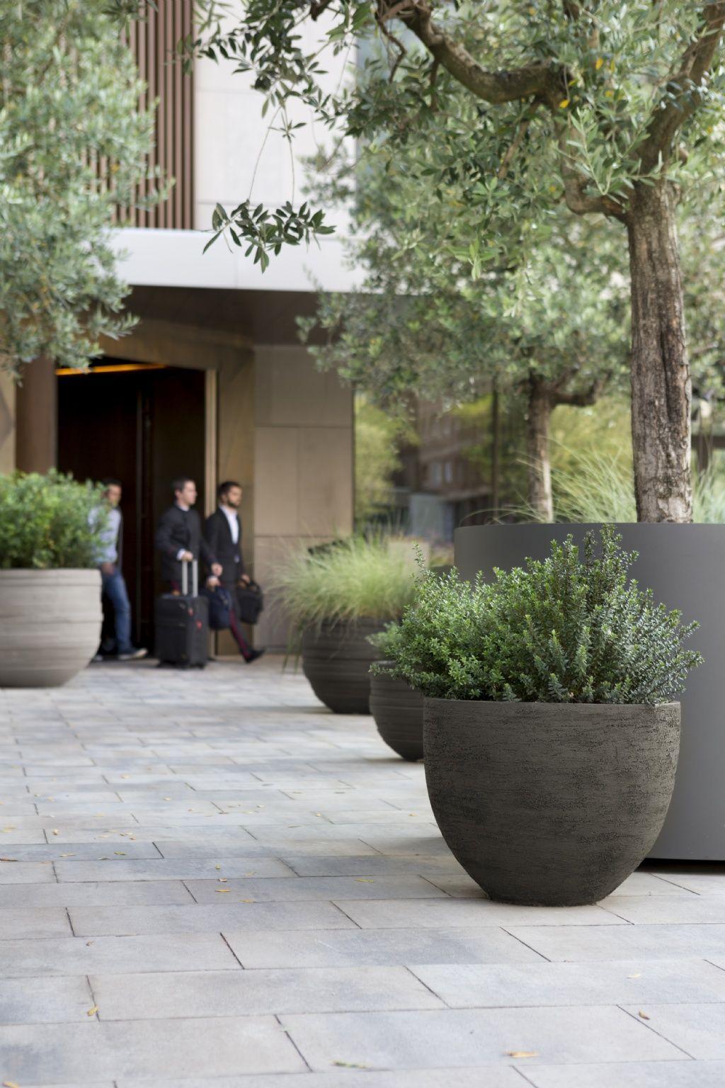 Pin von André Lemmens auf Garten terrasse in 20   Pflanzenkübel ...