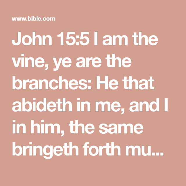 John 155 I am the vine, ye are the branches He that