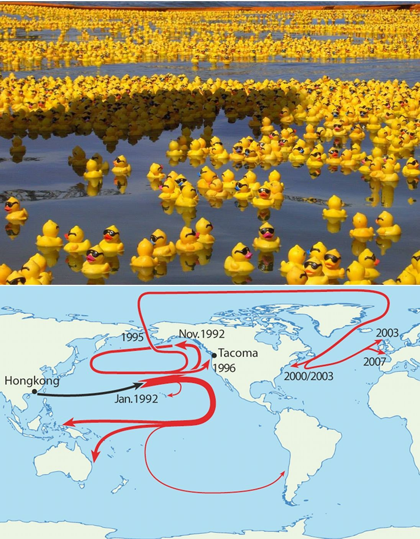 Friendly Floatees Rubber Ducks In The Ocean Odd Things