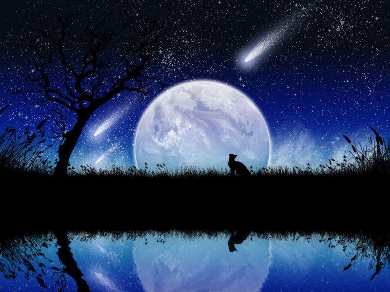 shooting star, tree, moon   Pretty   Pinterest   Shooting stars