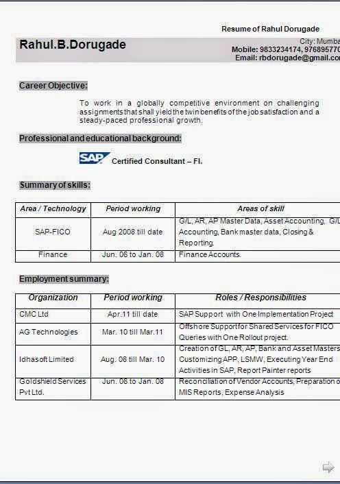 business analyst resume examples sample template example of excellent curriculum vitae resume cv format - Sap Analyst Resume