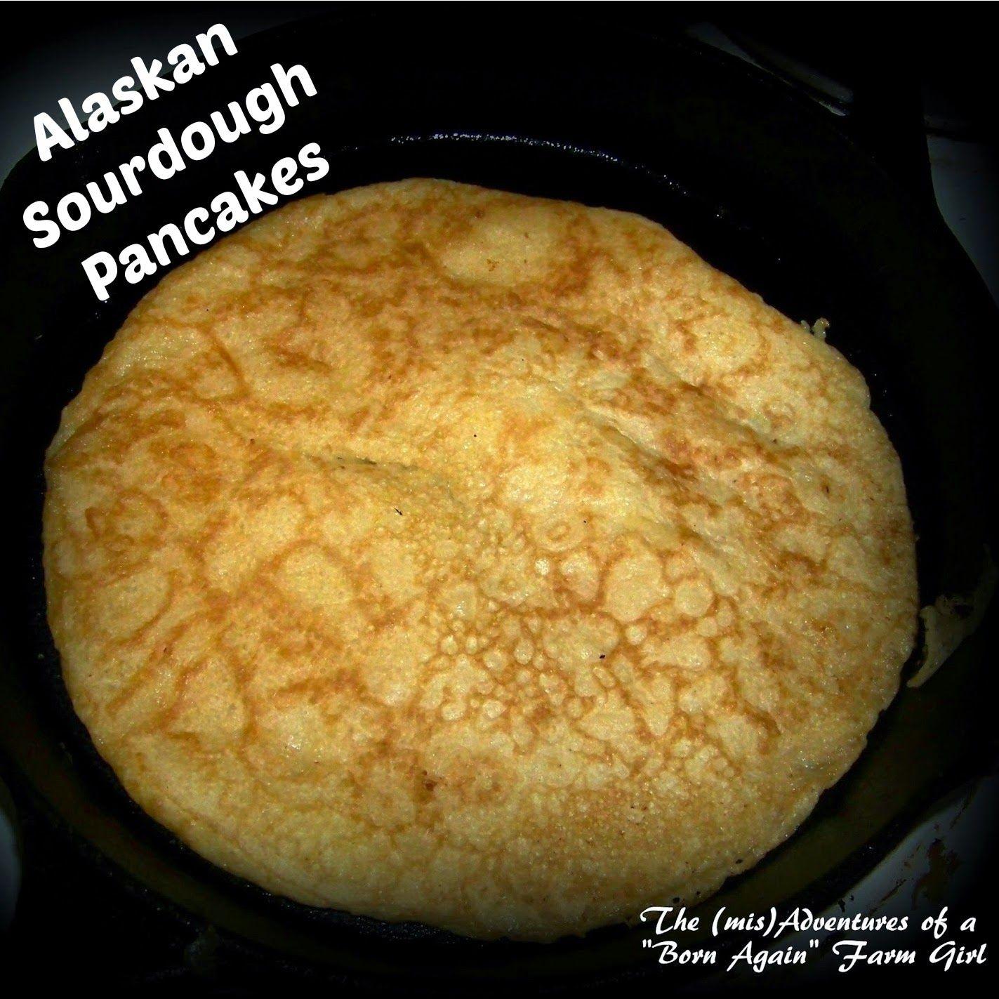 recipe: alaskan sourdough pancakes [24]