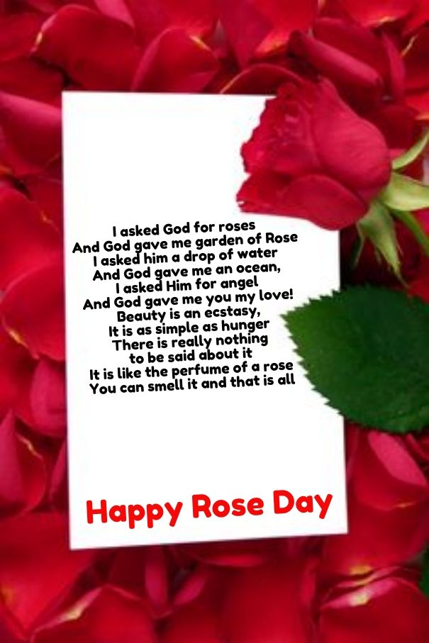 roses poems happy rose day pictures quotes poems pinterest