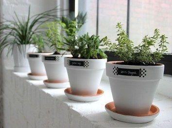 50 Classy Garden Window Decoration Ideas #kleinekräutergärten