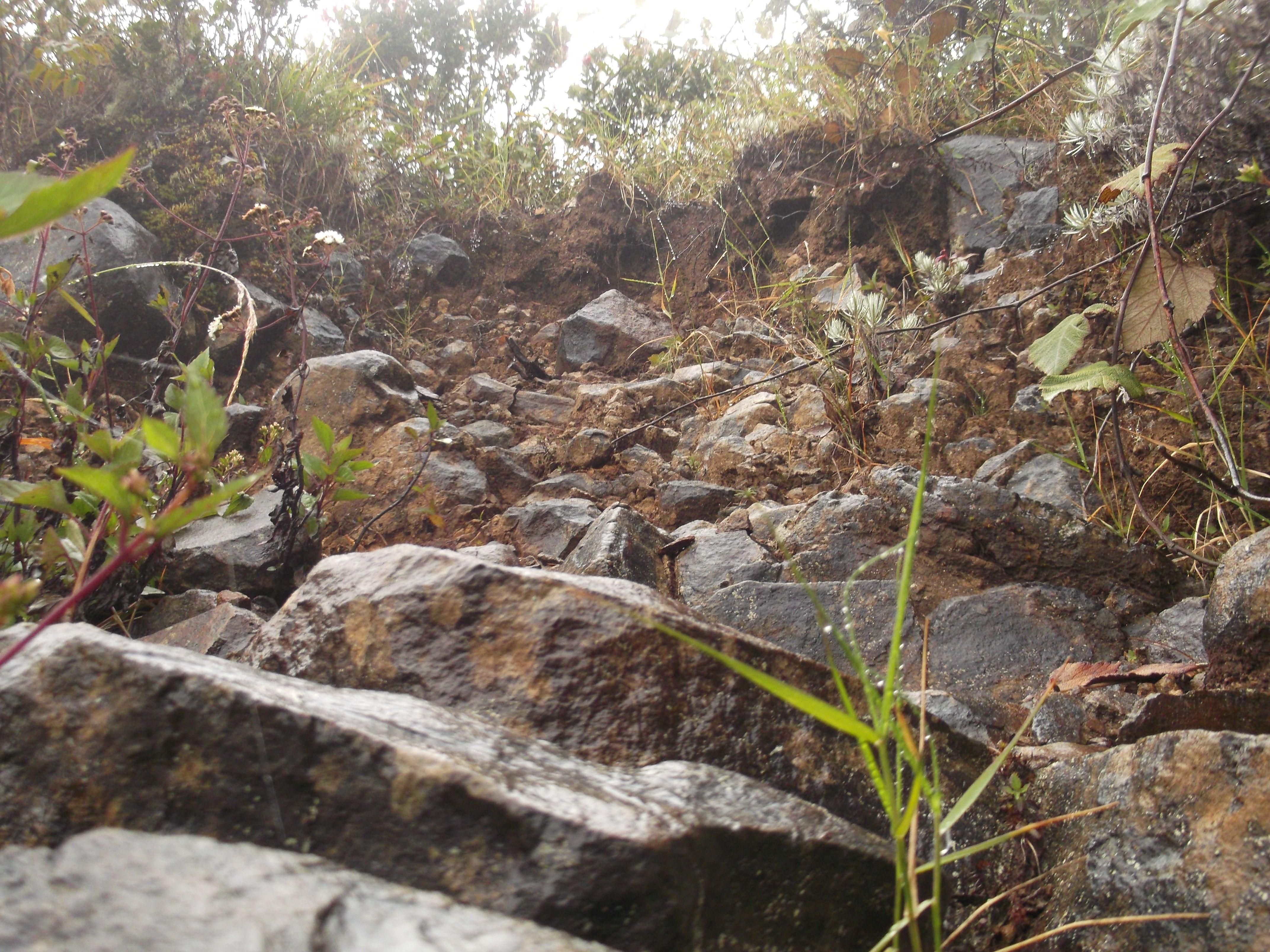 batu-batu, tanah basah, untaian nada