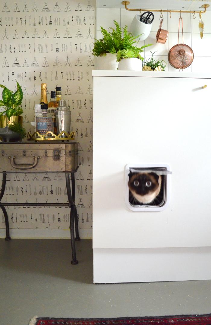 Goldene Zeiten für die Küche Katzenklo im Schrank DIY Litter Box ...