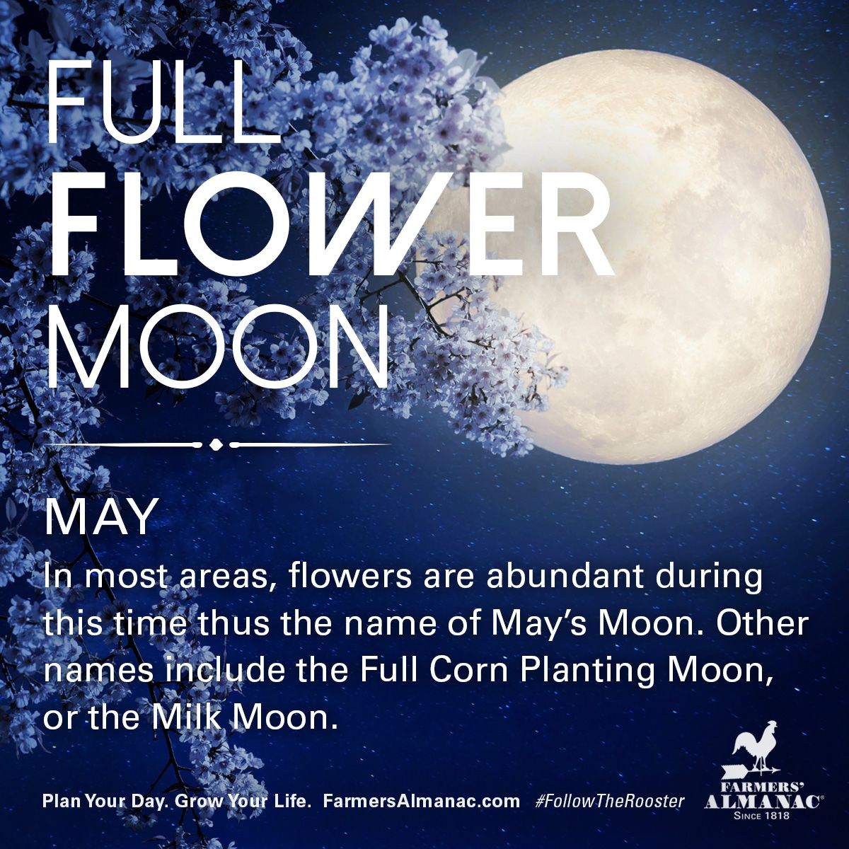 According to folklore, May's full Moon goes by many names. #spring #fullmoons #folklore #may