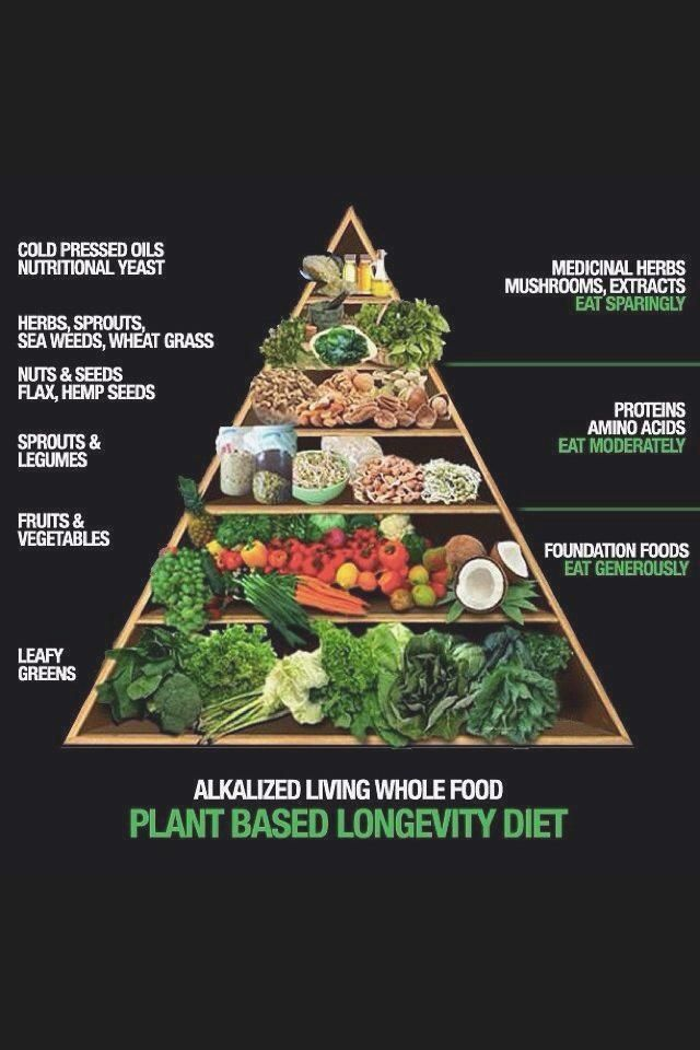 Plant Based Food Pyramid   not a
