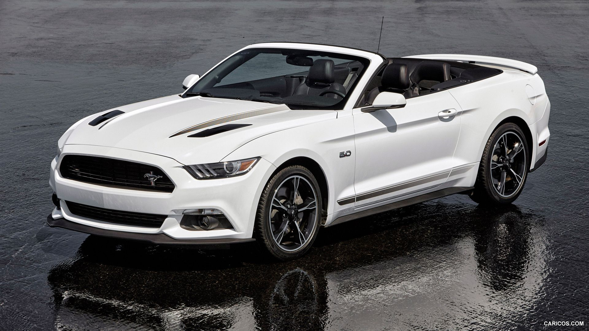 Gallery of ford mustang images