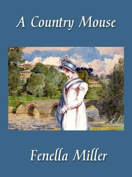 A Country Mouse - Fenella Miller eBook