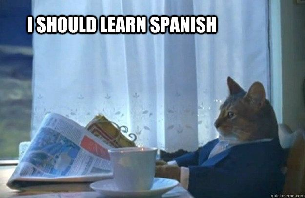 How To Learn Spanish Vocabulary With Reddit Memes And More Funny Pictures Cat Memes Funny Animals