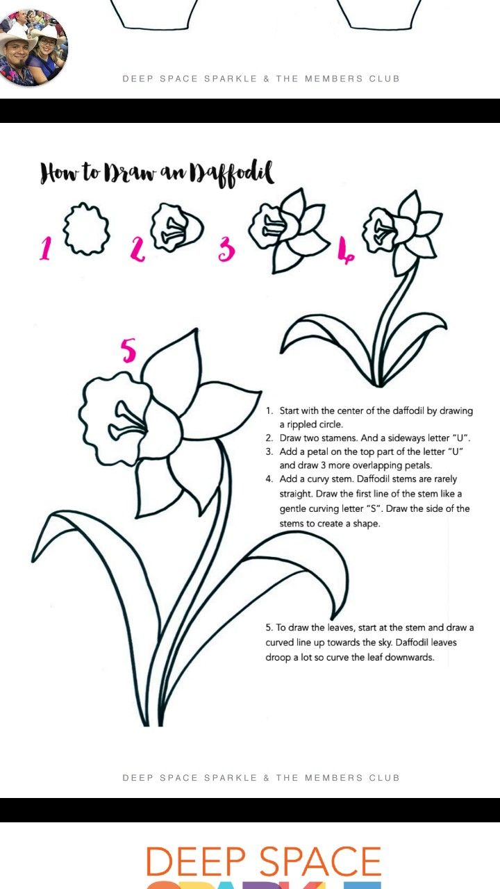 So By Step How To Draw Daffodils Flowers In A Vase Easter Spring