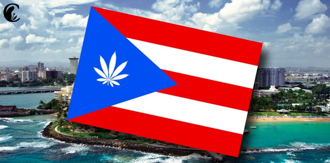 Puerto Rico, uno más La isla caribeña se une a los estados americanos que regulan el cannabis medicinal...La última semana del mes de enero entró en vigor el reglamento para el uso, posesión, ...