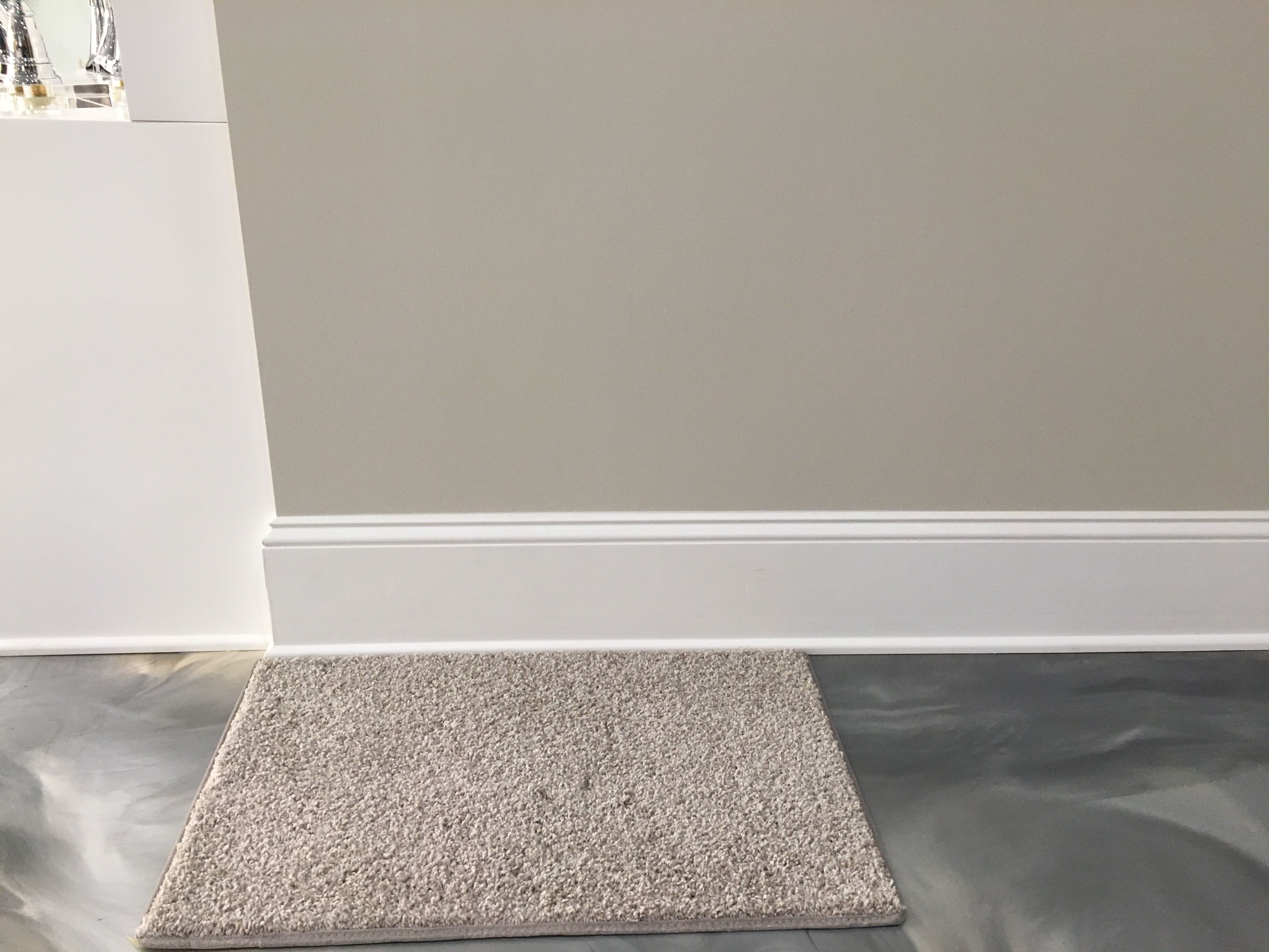Carpet With Agreeable Gray Paint Agreeable Gray Carpet Co