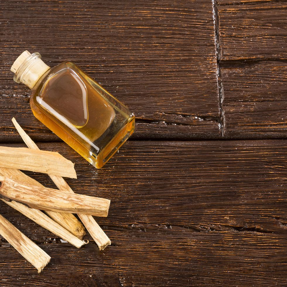Palo Santo Might Be The Answer To Those Downer Vibes You Can't Seem To  Shake | Palo santo, Palo santo essential oil, Palo santo oil