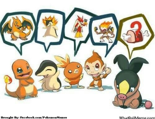 Poor Tepig Can T Remember Its Last Evolved Form