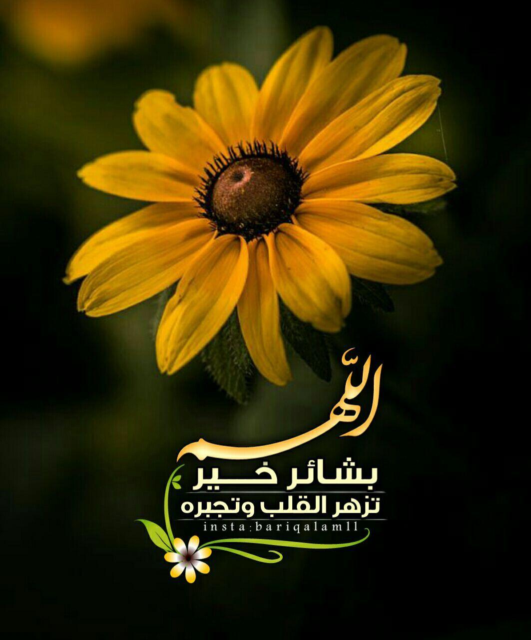 Pin By نشر الخير On أدعيه Islamic Quotes Quran Islamic Images Islamic Art Calligraphy