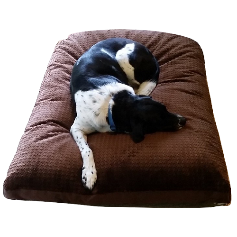 Futon Dark Cocoa Cuddle Top Mod Dog Bed Mod Dog