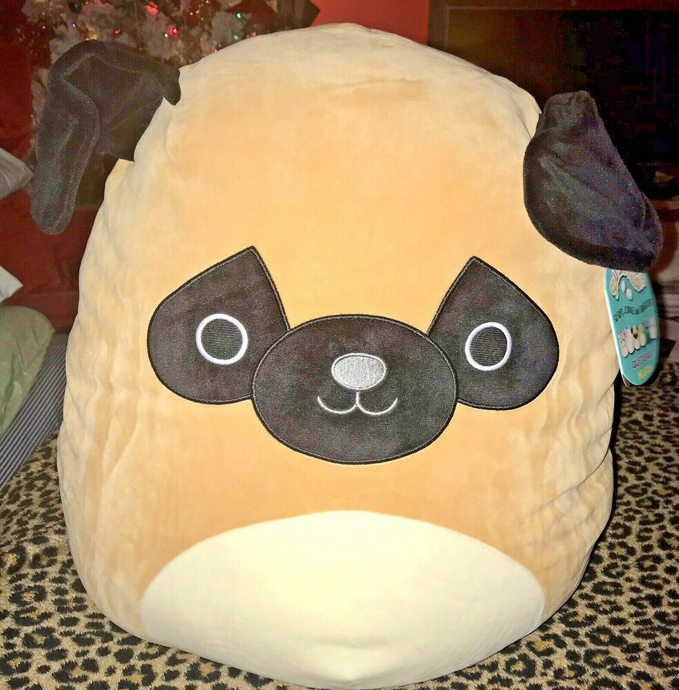 Squishmallow Prince The Pug 16 Inch Dog Ebay Pugs Dogs Mallow