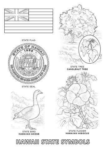 Hawaii State Symbols coloring page from Hawaii category