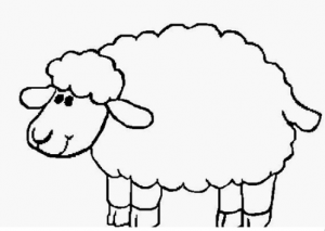 Sheep Coloring Pages For Preschool Preschool And Kindergarten Sheep Template Sheep Drawing Coloring Pages