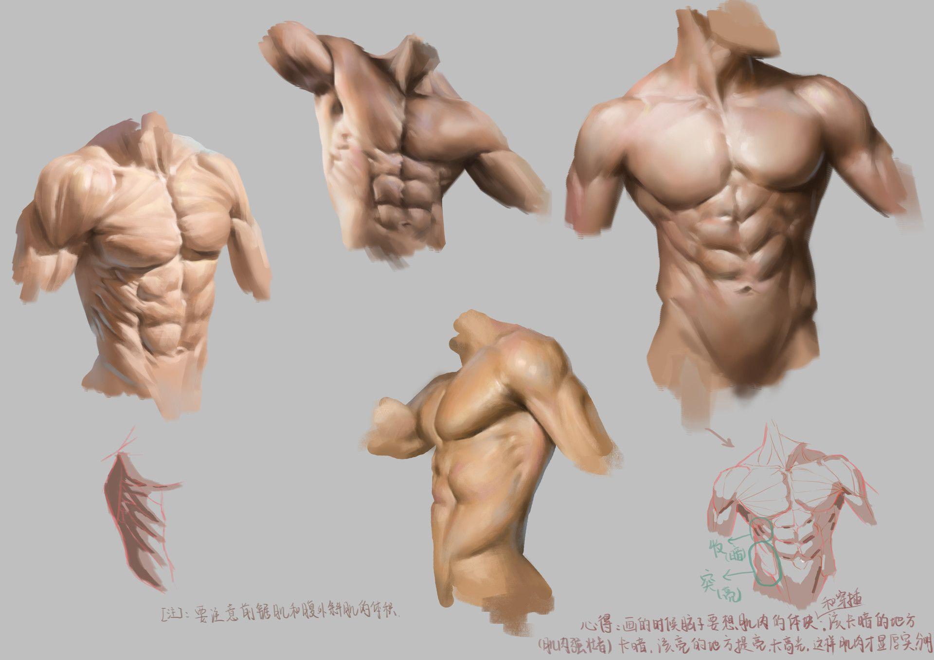 Male body study, Qiaofeng Chen