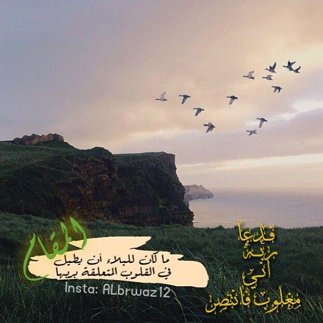 Instagram Photo By Albrwaz12 Aℓℬℛẁăẕ Via Iconosquare Photo Instagram Instagram Photo