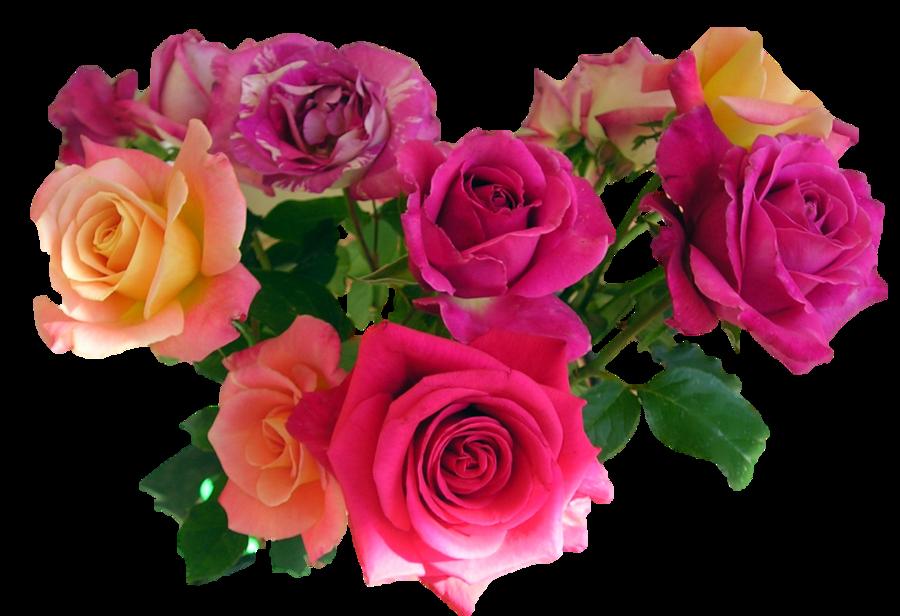 Bouquet Flowers Flowers, Transparent flowers, Beautiful