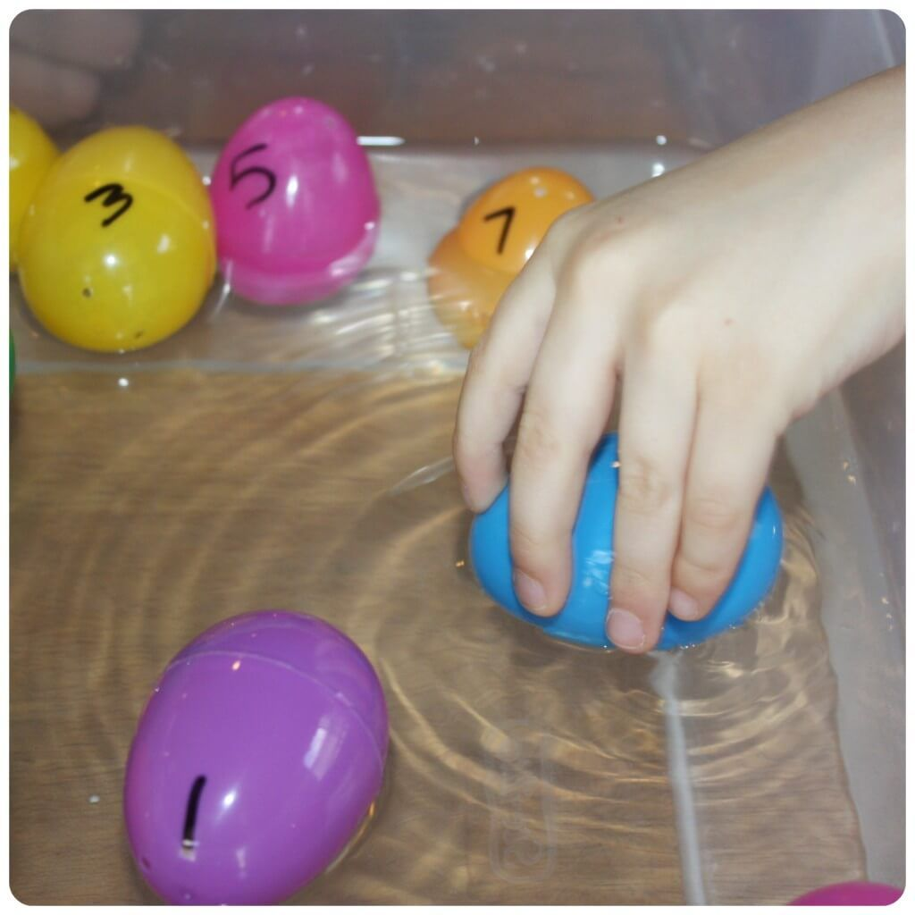 Egg Science Water Experiment Sink Float