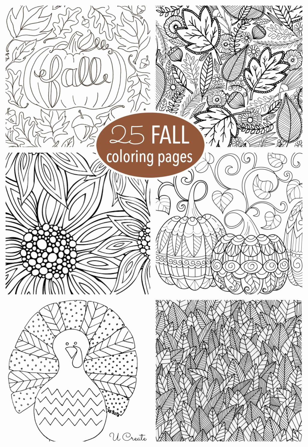 Pin On Fall Coloring Pages For Kids [ 1486 x 1024 Pixel ]