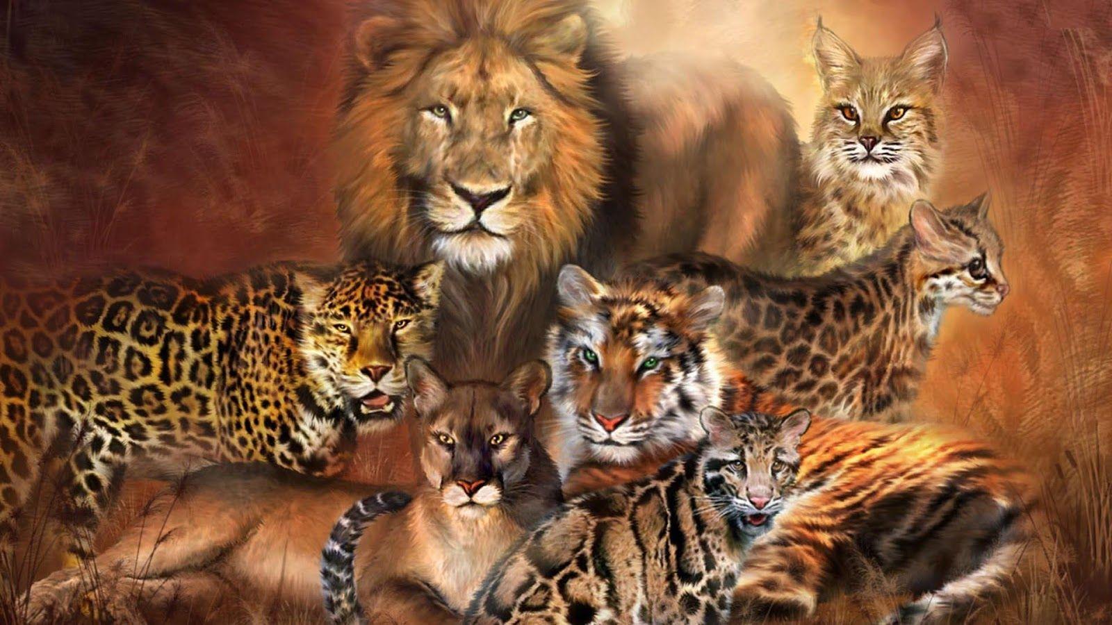 Картинки хищных кошек пантер львов тигров одной прекрасной