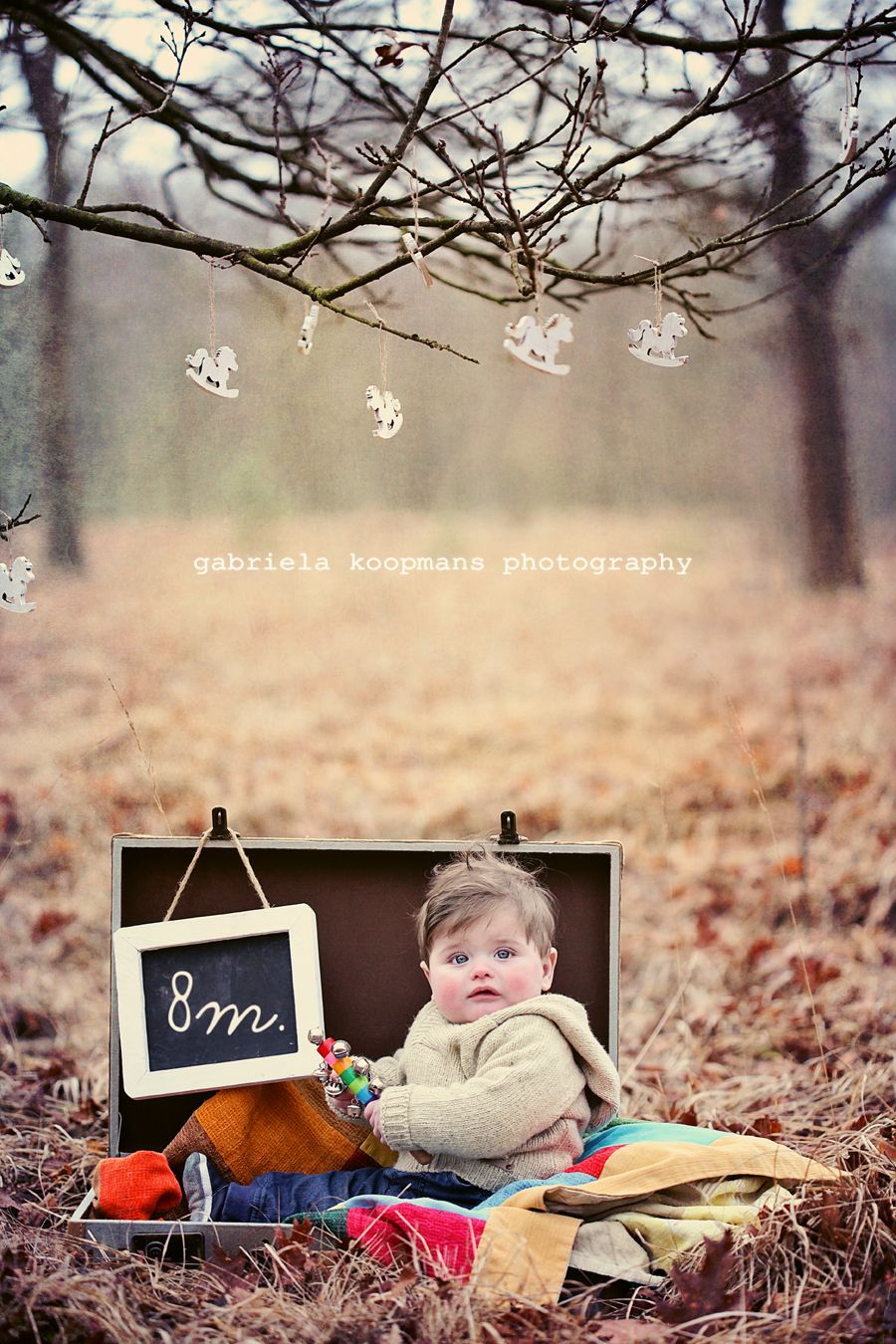 8 Month Old Baby Picture Ideas