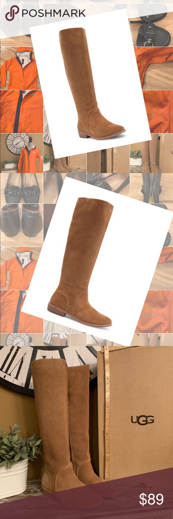 f57670fb0c3 UGG Daley Tall Boot in Classic Chestnut. SZ 6 NWT NWT UGG tall boots ...