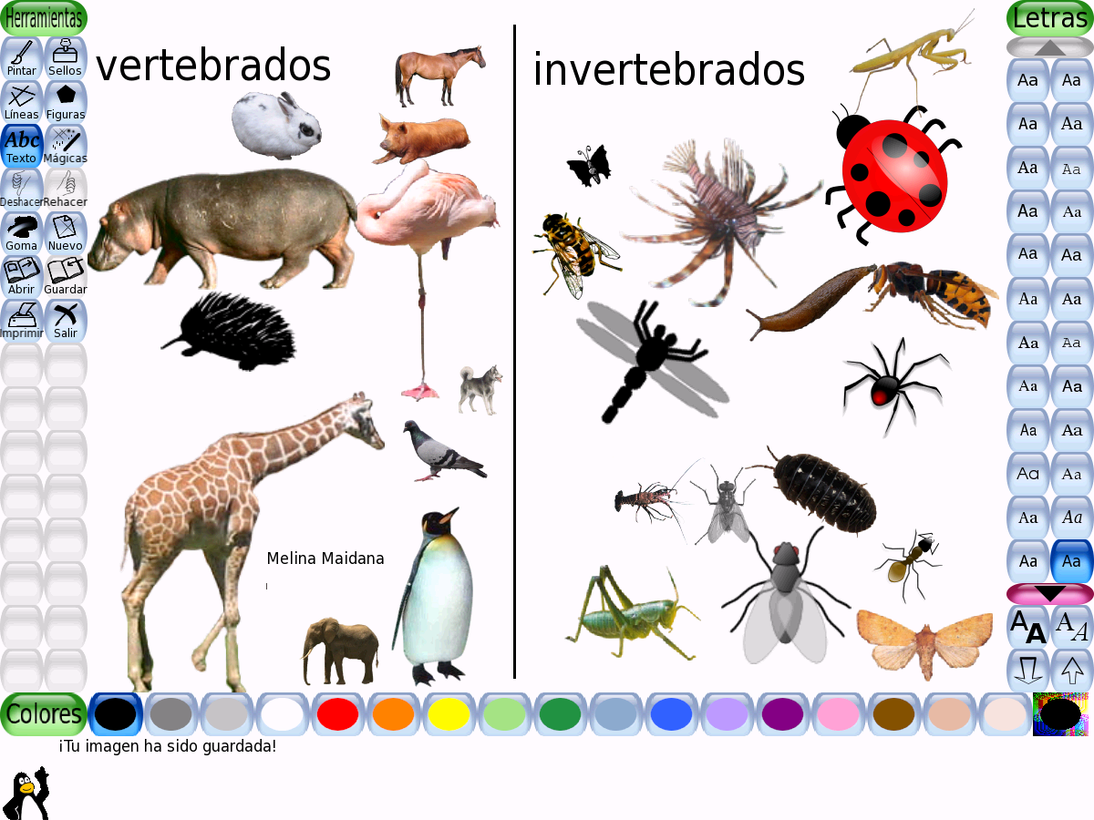 Pin En Lapbook Animales