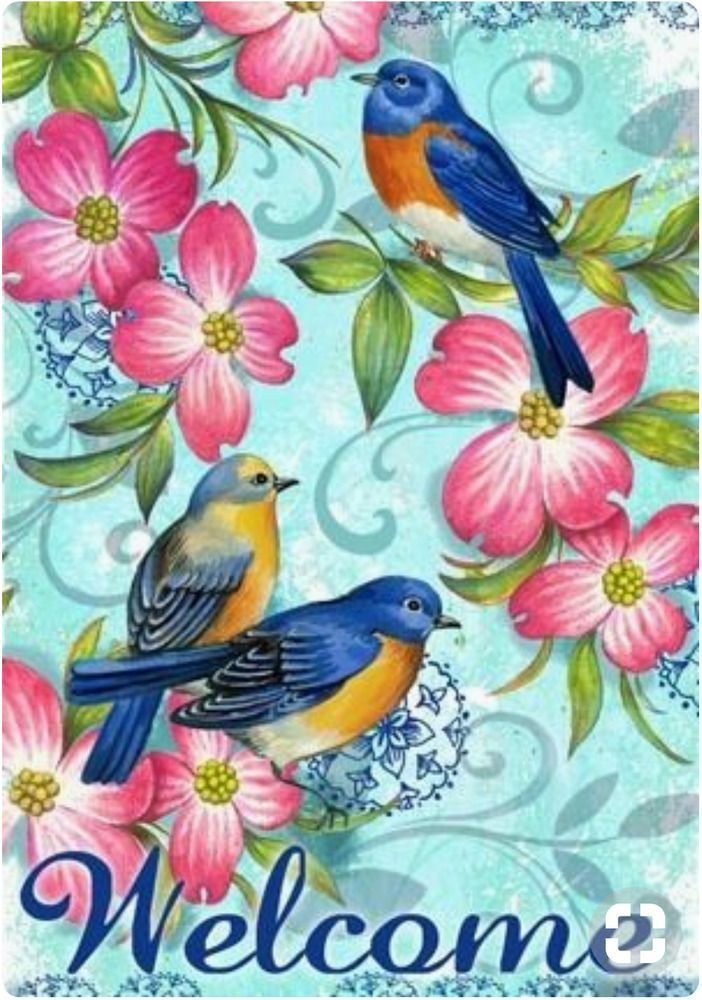 Welcome Birds And Flowers Spring Summer Garden Flag 12 5 X 18 Hummingbirdhaven When Building A New House T Bird Art Welcome Pictures Summer Garden Flags