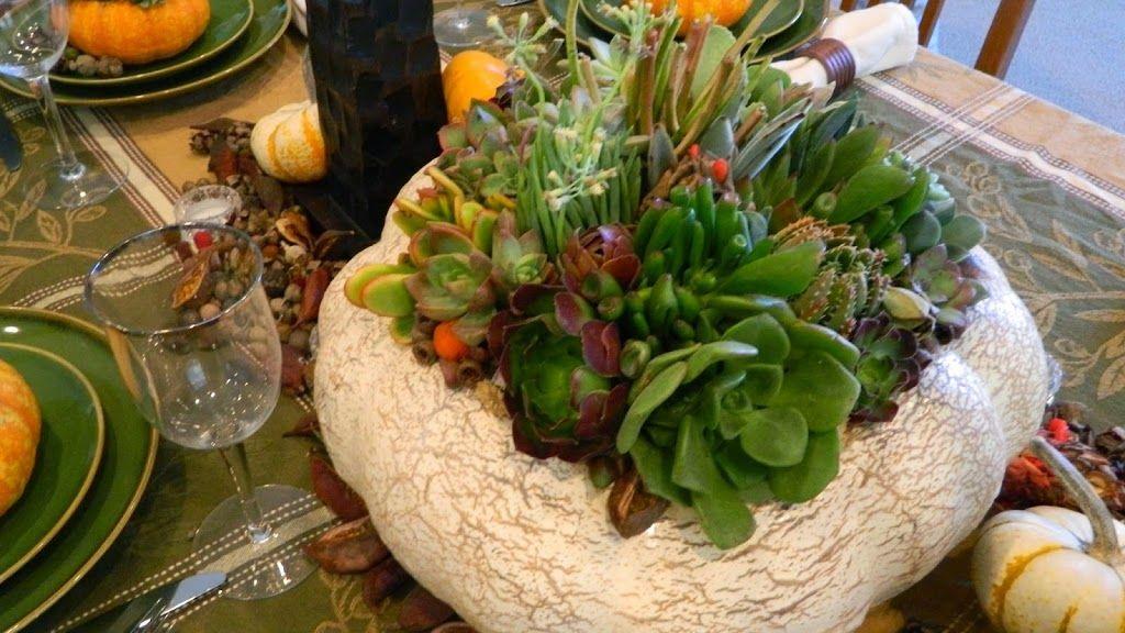 Arreglo con plantas cactus arreglos con suculentas for Arreglo de jardines con piedras