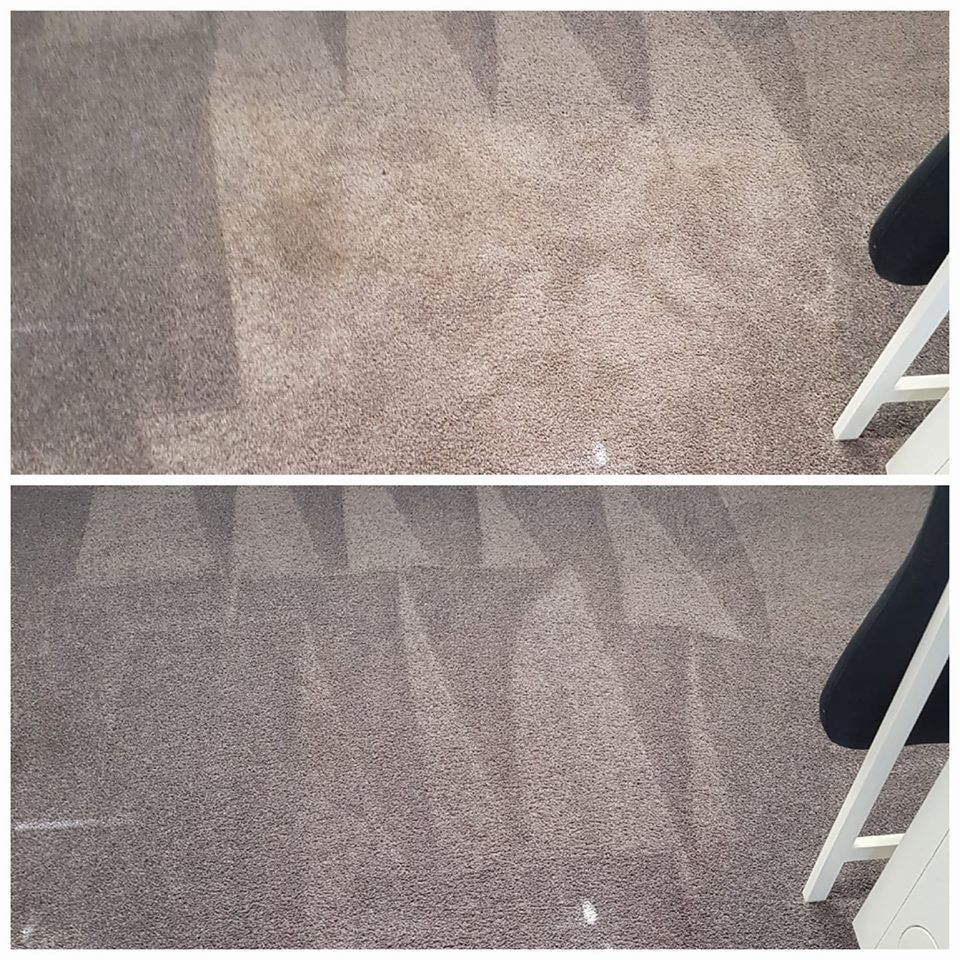 Pin By Carpet Cleaning Arlington On Your Pinterest Likes Carpet Cleaning Company Choosing Carpet Steam Clean Carpet