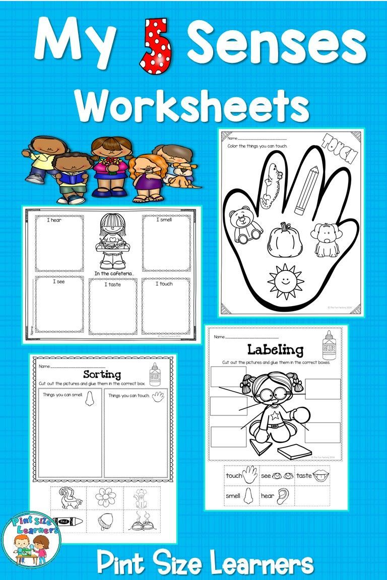 Five Senses Unit Activities | 5 Senses Worksheets | Pre-K ...