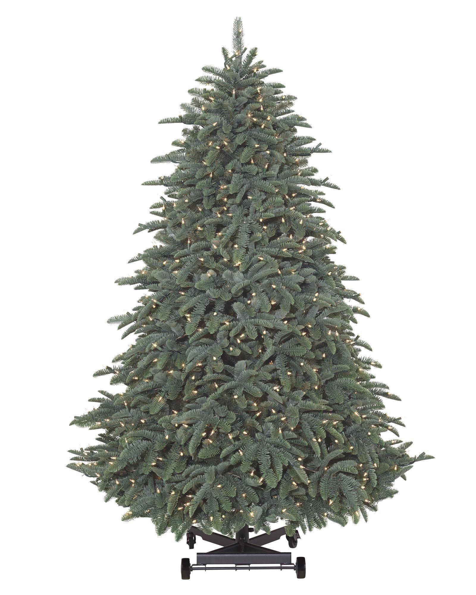 Bh Balsam Fir: BH Noble Fir Flip Tree&trade